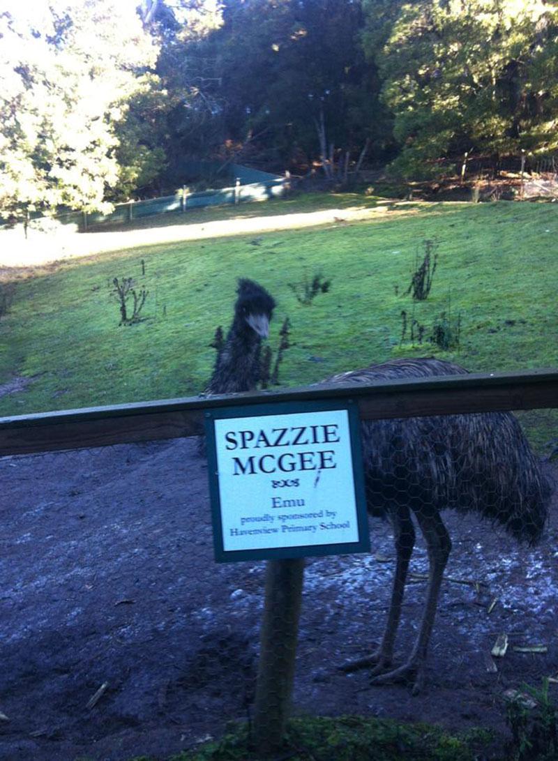 Emu Spazzie McGhee